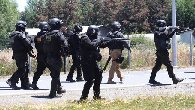 agresión pueblo mapuche, PDI
