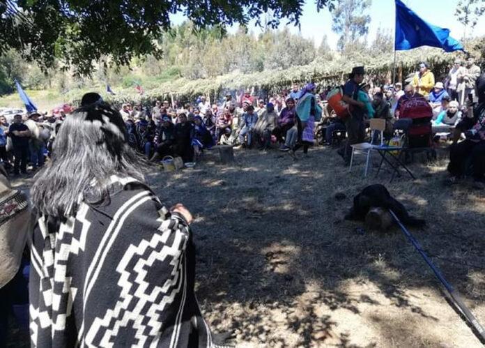 Conclusiones del Lef Trawun Mapuche: Fin a la Violencia Estatal y Reafirmación de Derechos Ancestrales