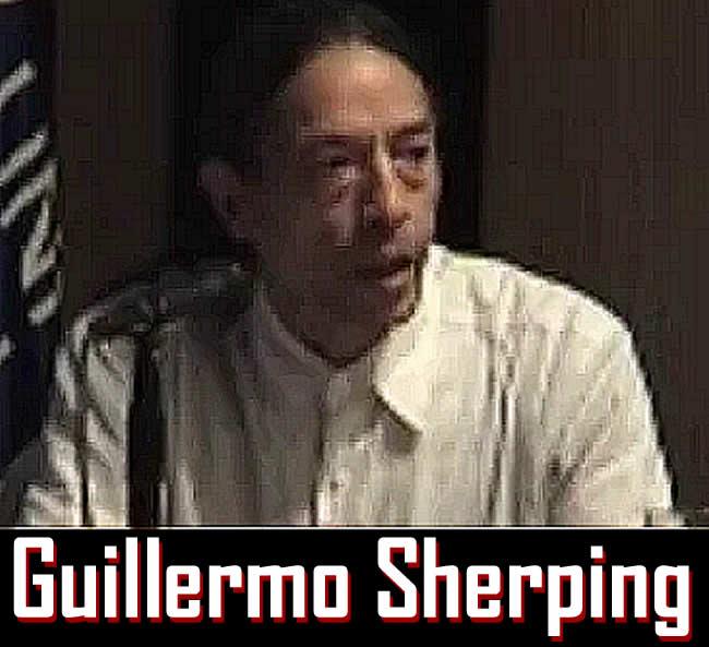 Guillermo Scherping : Clases Presenciales e Industria Educacional