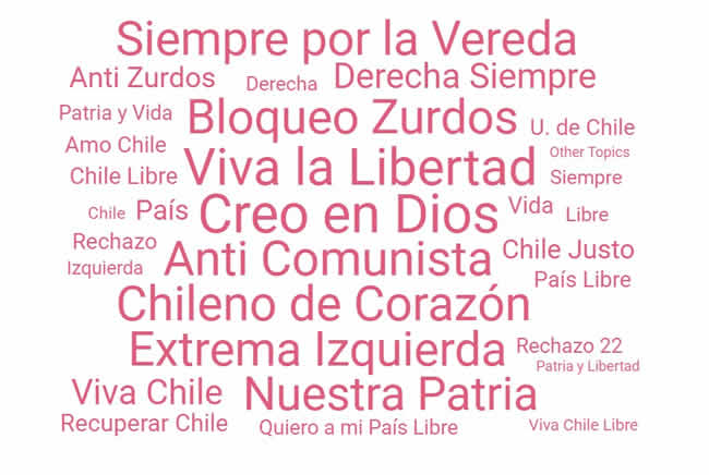 La Campaña del Fascismo Tuitero contra Elisa Loncón