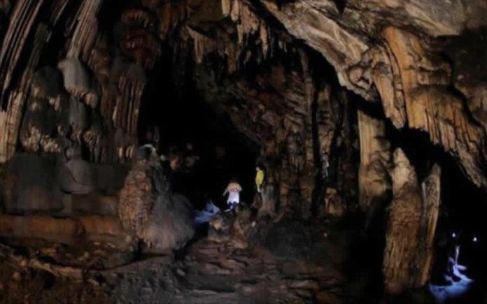 Todo de Nuevo: Encuentran Pinturas Rupestres de 65 Mil Años